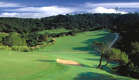Golf referendum