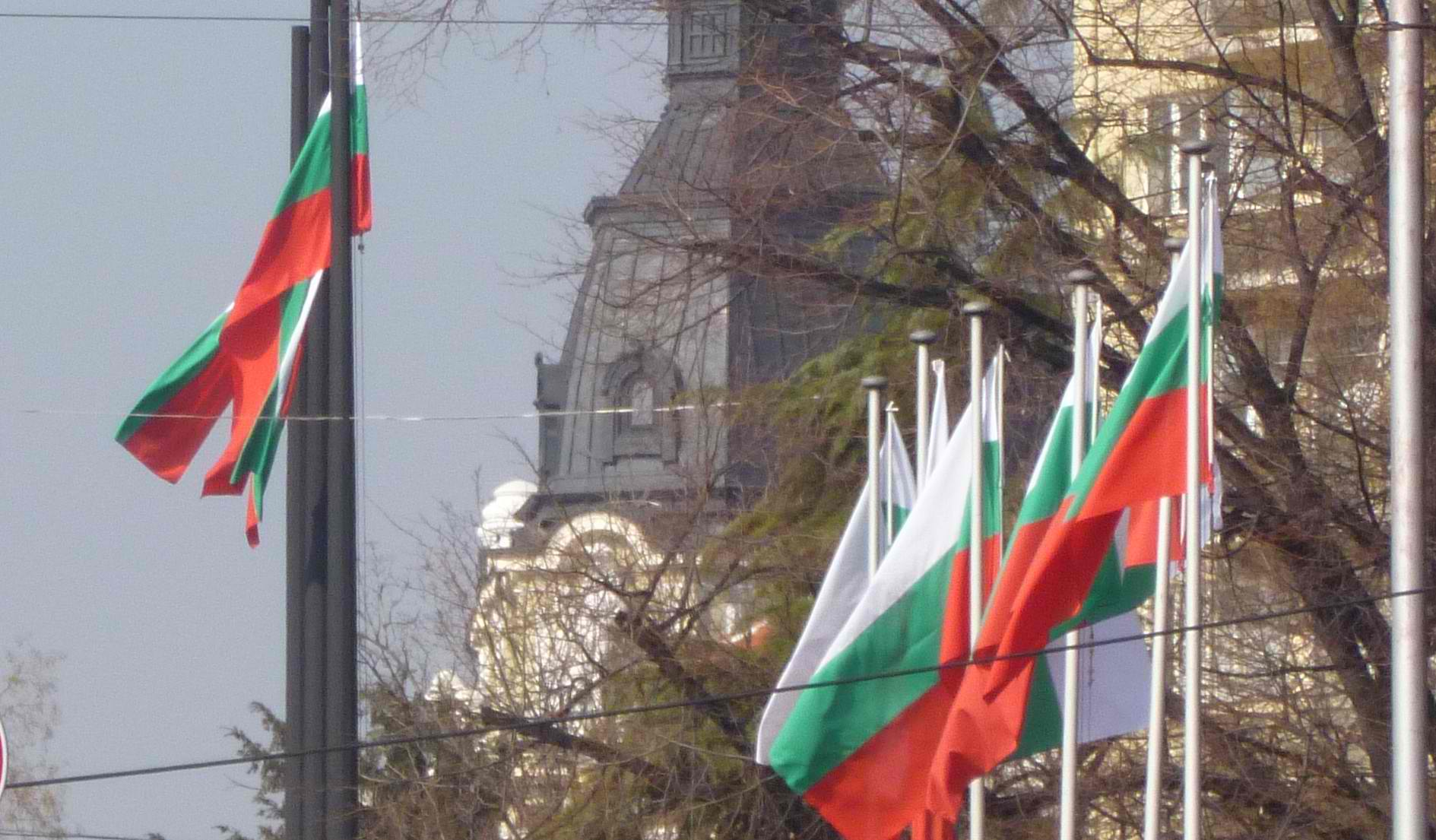 Bulgaria's 2013 parliamentary elections: Profiles of parties and players
