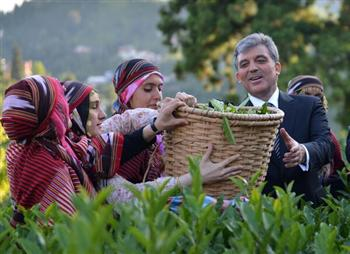 President Gül calls on Gezi protesters to 'go home'