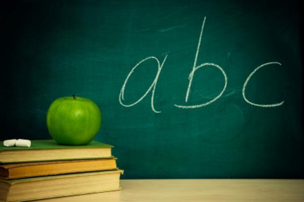 World Literacy Day Marked in B&H