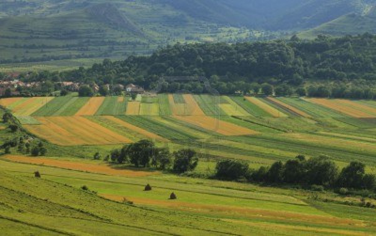 Romania tightens land selling rules