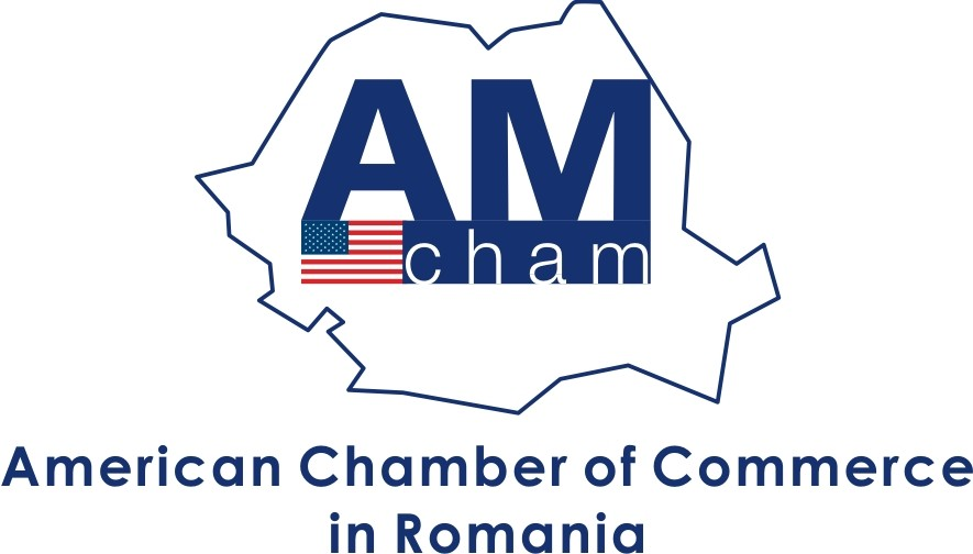 AmCham Romania slams government for lack of transparency