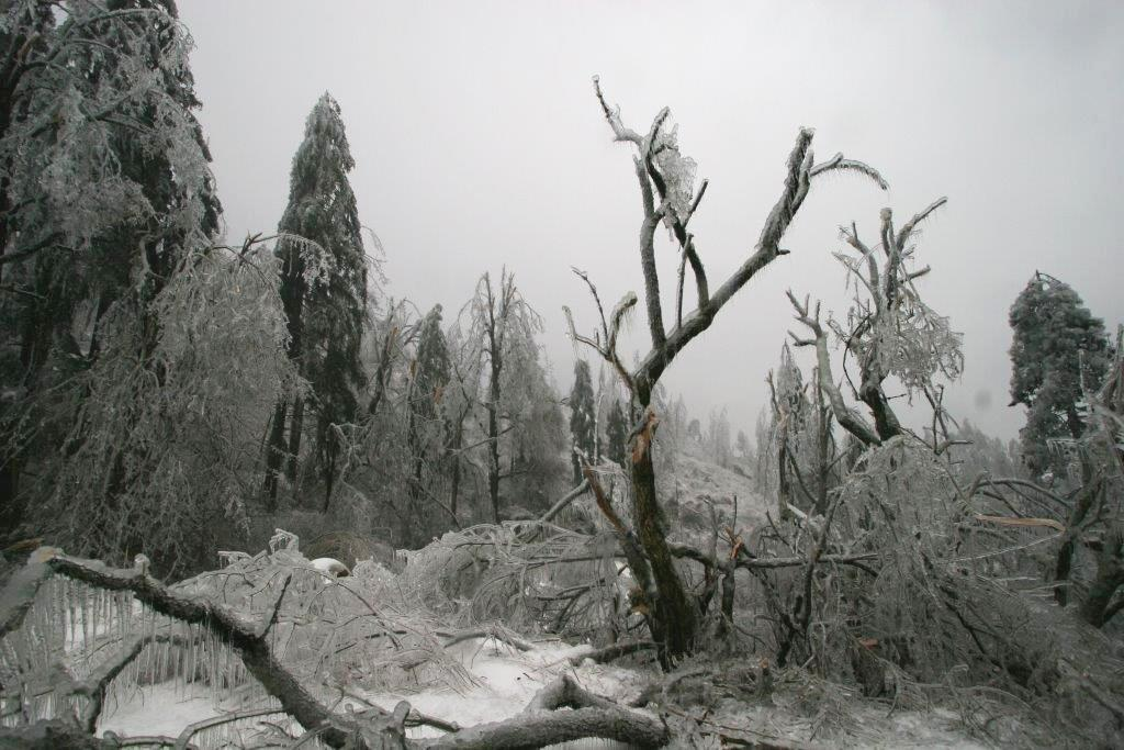 Winter weather damages in Slovenia estimated at €403mln