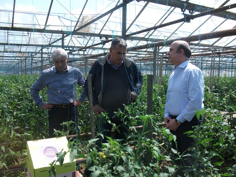 Albanian government funds bio technology for the production of vegetables and fruits