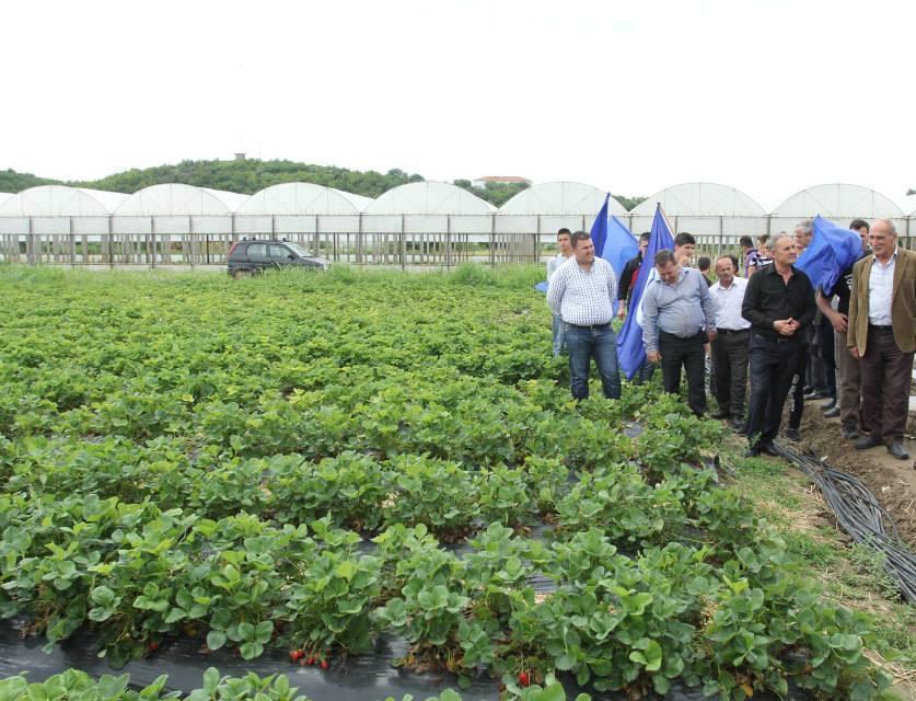 World Bank provides 7.3 million Euros for Albanian farmers