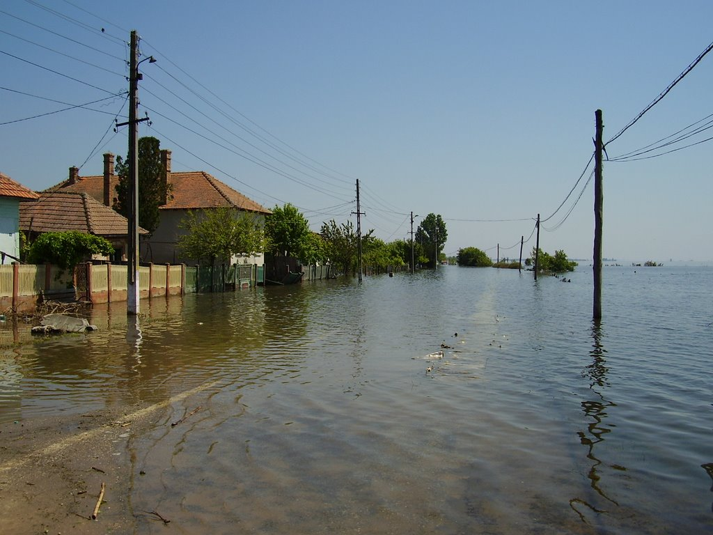 Weekly review: floods, false debates and ministers with poor Romanian knowledge