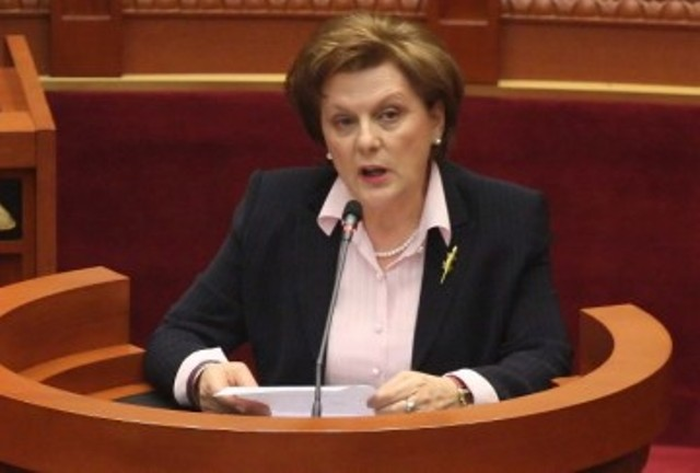 Albania backs efforts to stop fighters from going to Syria, says socialist MP