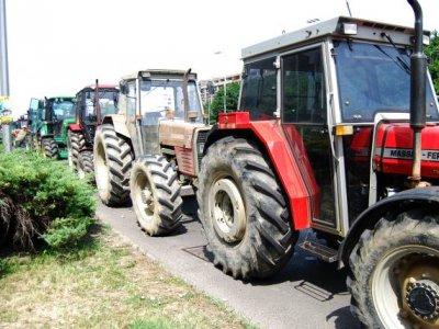 BiH milk producers set blockades on border crossings