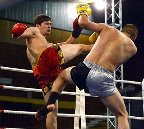FYROM's kick boxers obtain positive results in Croatia Open