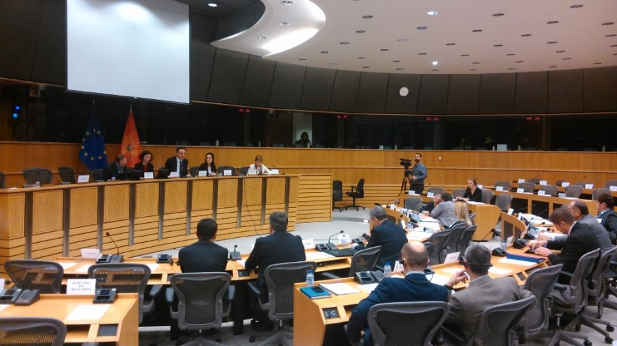 Joint Declaration of the Montenegrin and European parliamentarians