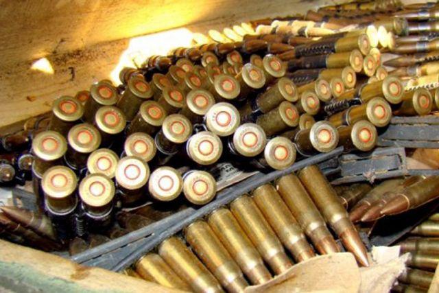 Germany supports weapon surplus destruction