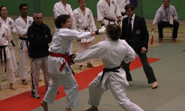 "Karate fighters from Skopje won 29 medals in the ""Ulcinj Open 2015"" tournament"