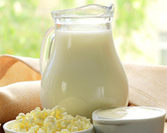 BiH milk industry problems require immediate actions