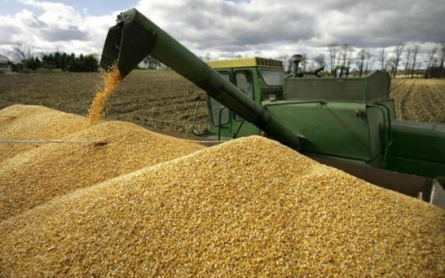Romania to export agri-food products to Gulf countries