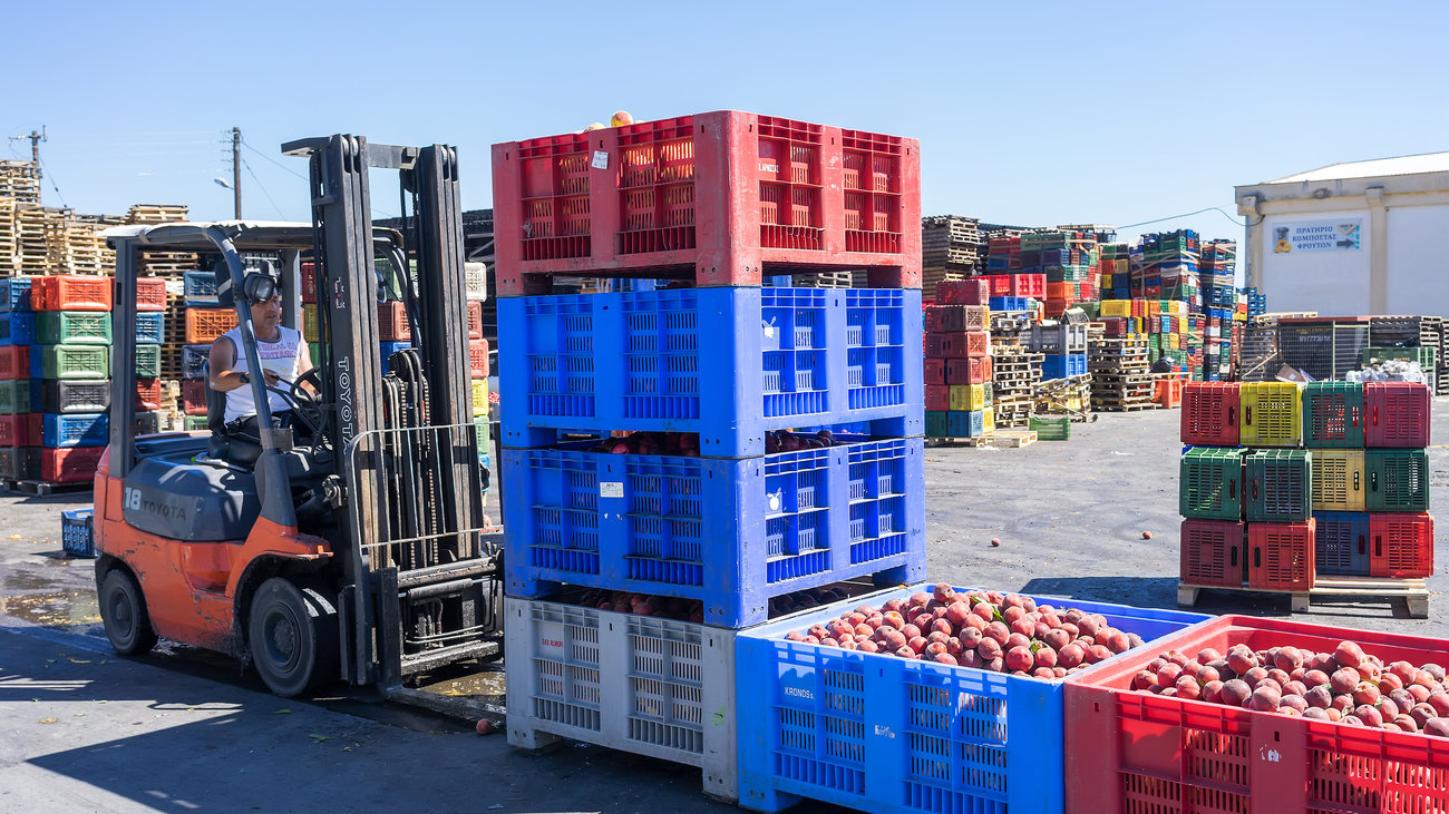 Russia to partially break the embargo on food imports from Greece and Cyprus