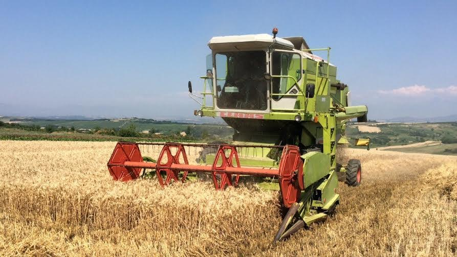 Expanding finance for Albanian agribusiness