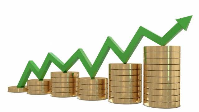 Kosovo's economic growth is not satisfactory
