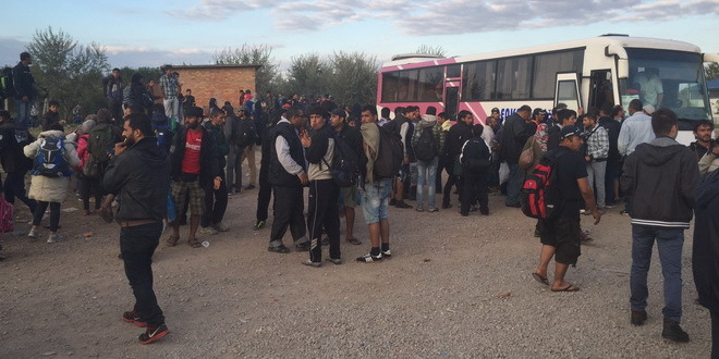 Refugees from Serbia rush to reach Hungary