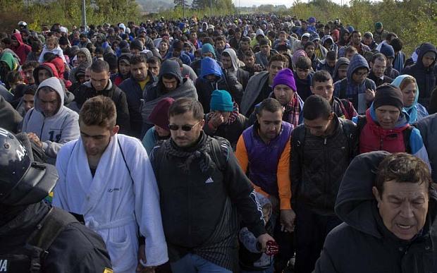 Slovenia to return of economic migrants to Croatia