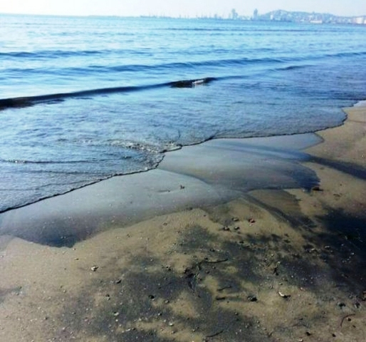 Poisonous materials let off at sea, Durres beach polluted (PHOTOS-VIDEO)
