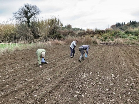 Farmers to pay for the migrants they hire