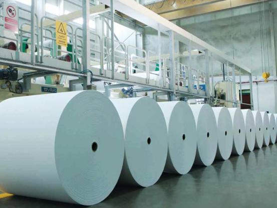 Ministry of Labour strongly opposes the closing of the biggest Greek paper industry