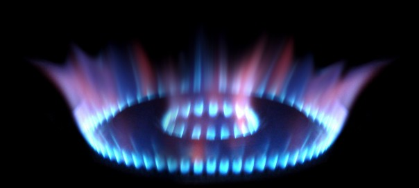 Bulgaria's utilities regulator to probe private provider Overgas