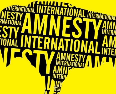 Amnesty International slams Bulgaria over push-backs of refugees, treatment of Roma, hate crimes