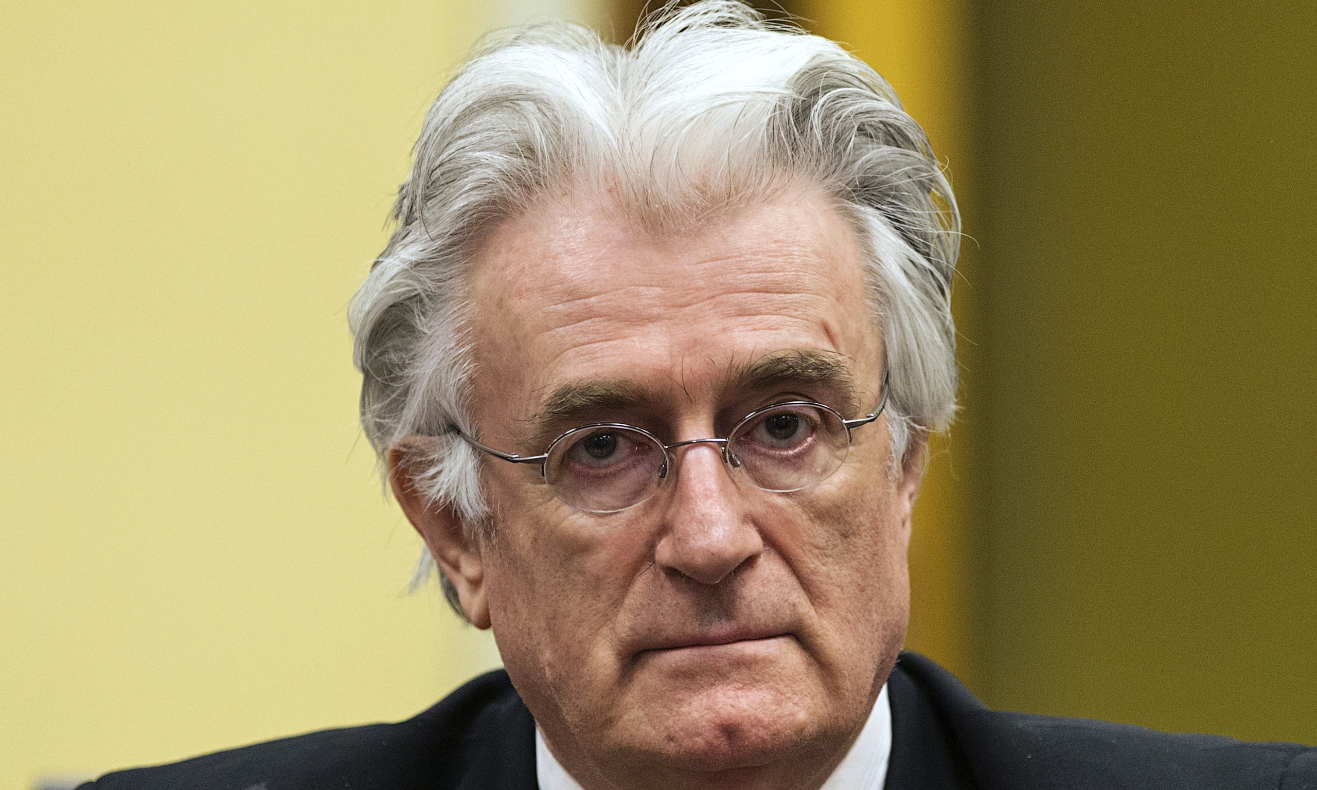 Karadzic verdict bring new dispute
