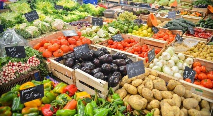 Fruit and vegetable exports increased in the first half of 2016