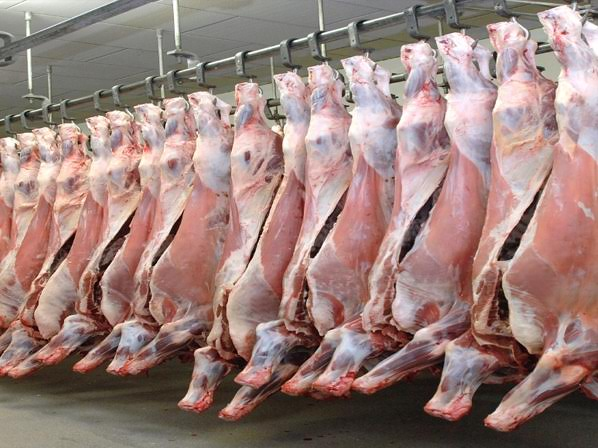 Russian ban on meat is not impacting domestic market