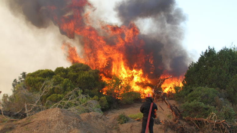 Fire rages in northern Euboea and Konitsa