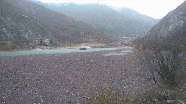 Massive pollution of the Dibra lake