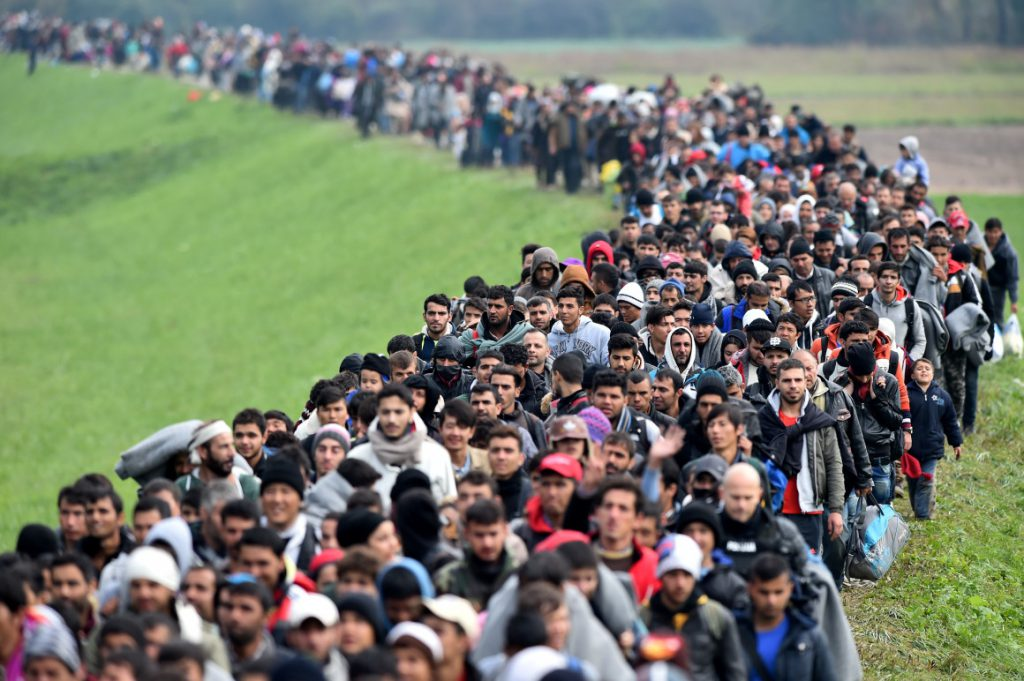 Govt to establish migrations office