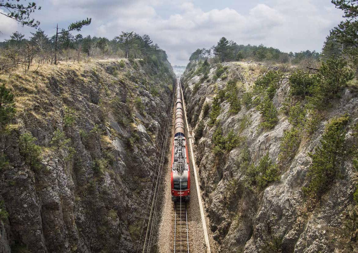 "Daily ""Dnevnik"": Rail referendum about politics"