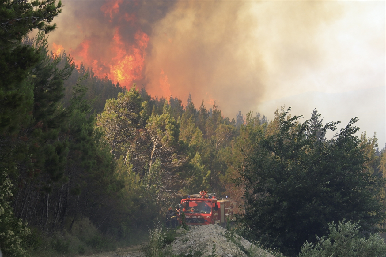 Around 900 fires broke out this summer in Albania
