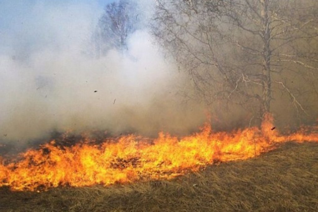 Massive fires in several areas of FYROM