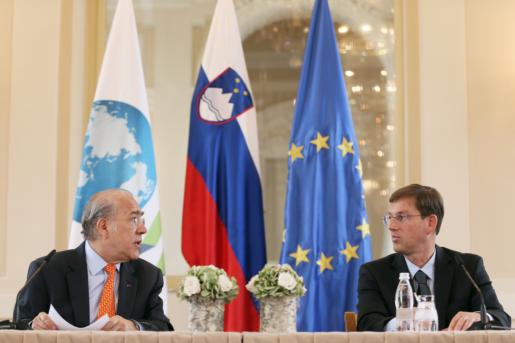 Cerar discusses plans for structural reforms with OECD boss