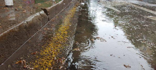 Weather warnings for heavy rainfall in Western Bulgaria