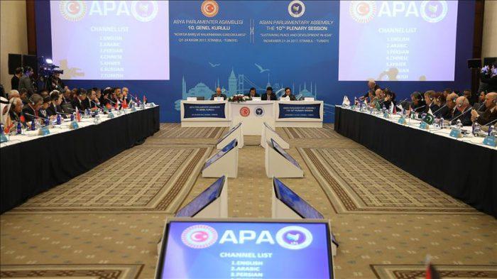 Turkey hosts the 10th APA plenary session