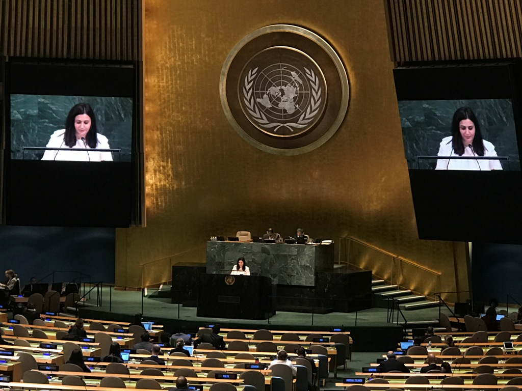 Cyprus honoured to have contributed to the promotion of universality of the Rome Statute – Vasiliki Krasa at the UN GA