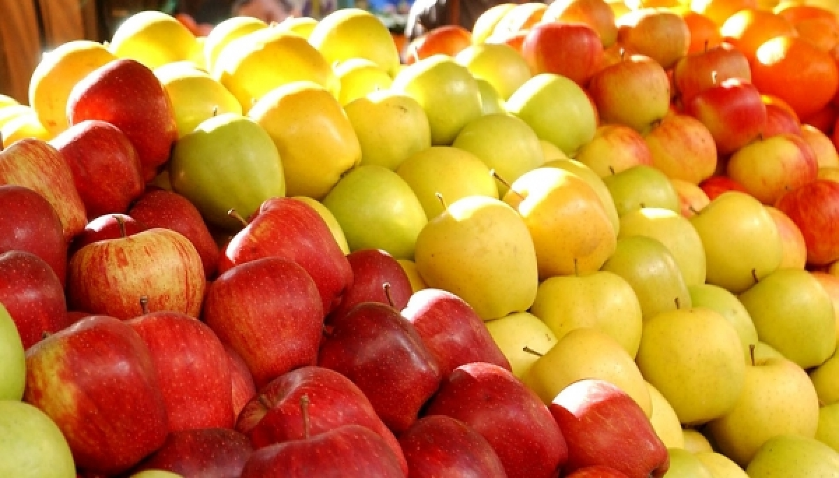 Russia reintroduces ban on the import of apples from BiH