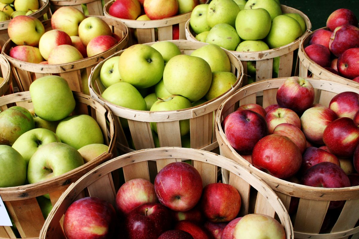 Apples from BiH still banned from Russian market