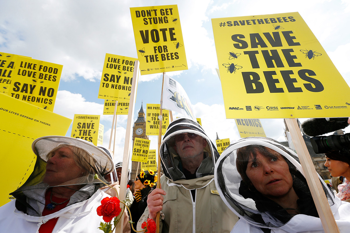A 'swarm' of votes led the EU to banbee-harming pesticides