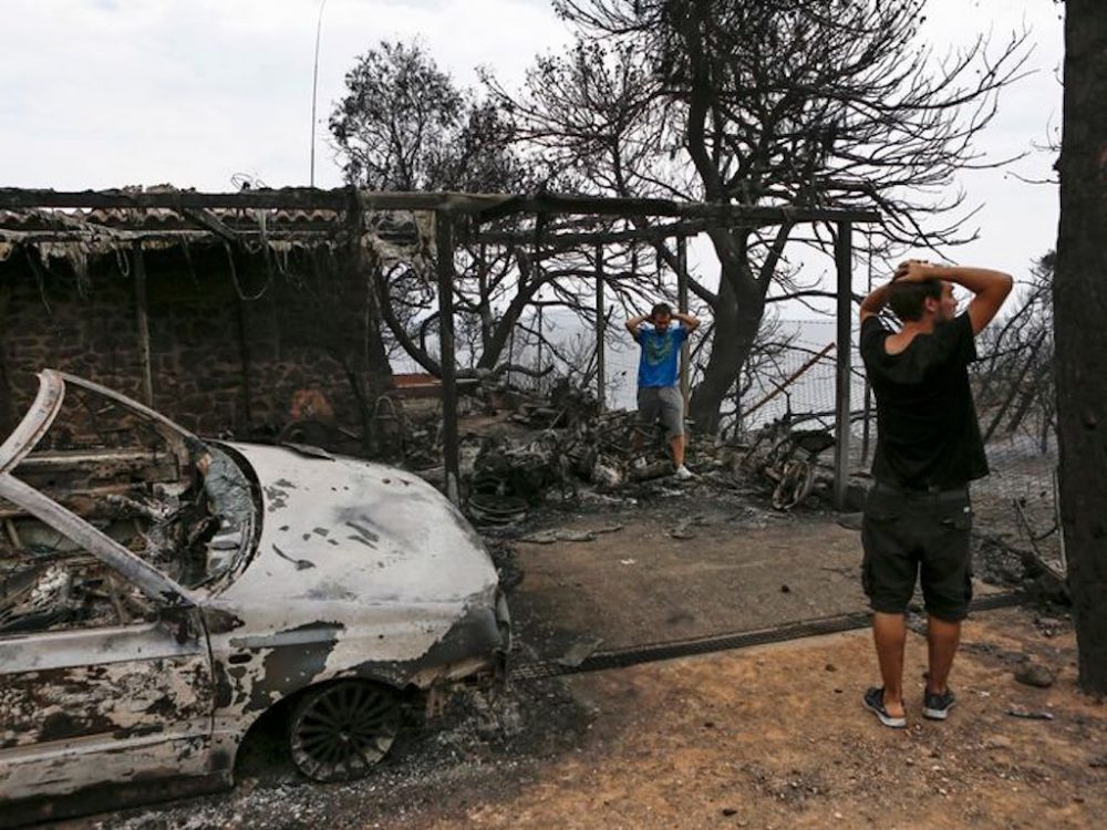Support to wildfire victims immense; government takes relief measures