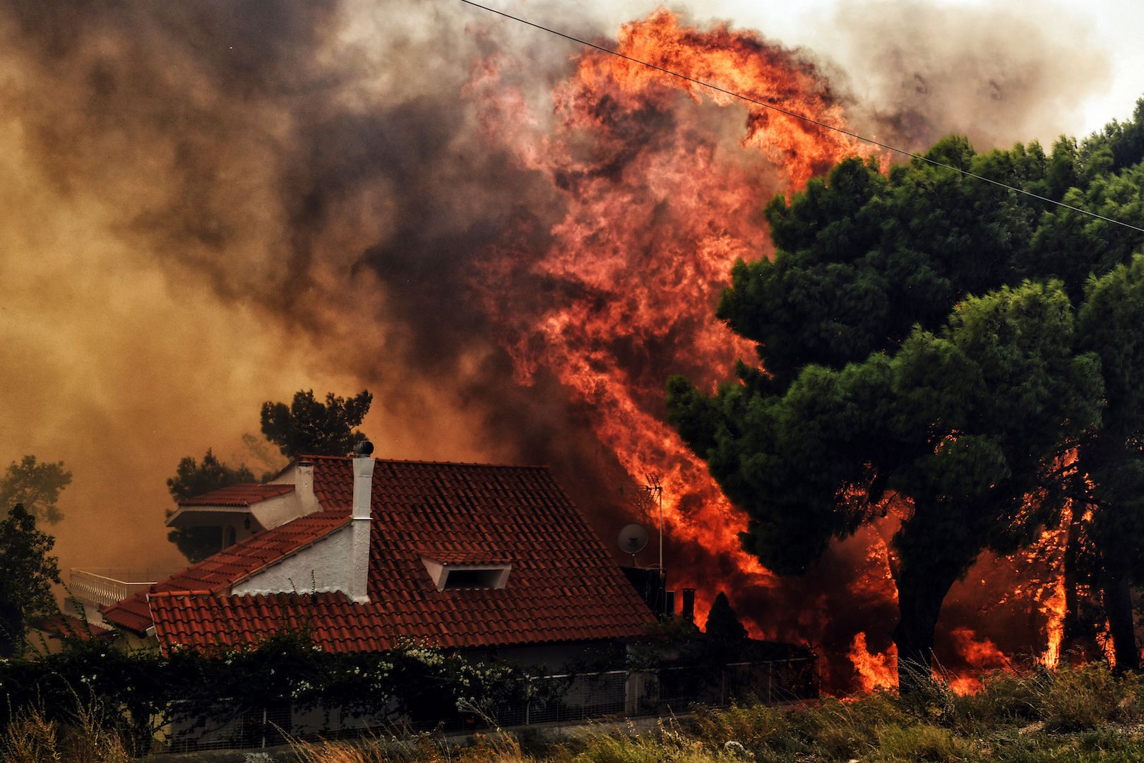 Victims of Attica wildfires reach 96
