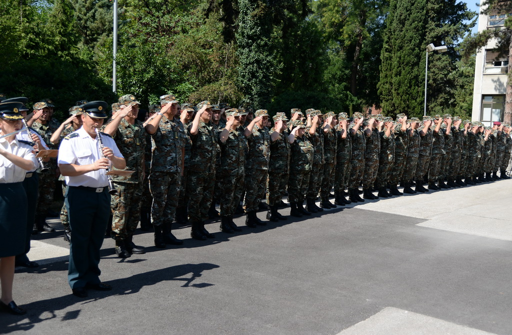 How much are Albanians represented in FYROM's defence system?