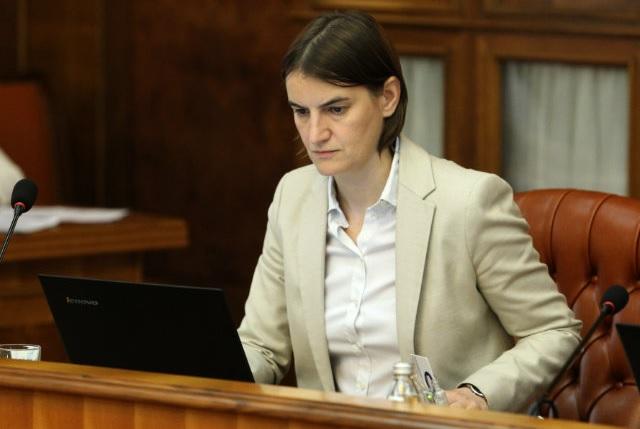 Brnabic remains silent over Karadzic's verdict