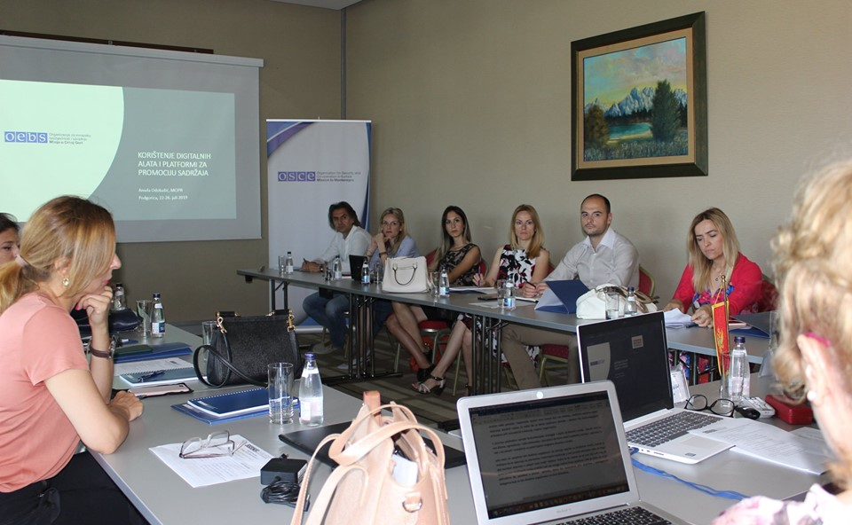 Training for ombudsperson representatives on using digital tools and platforms for promoting