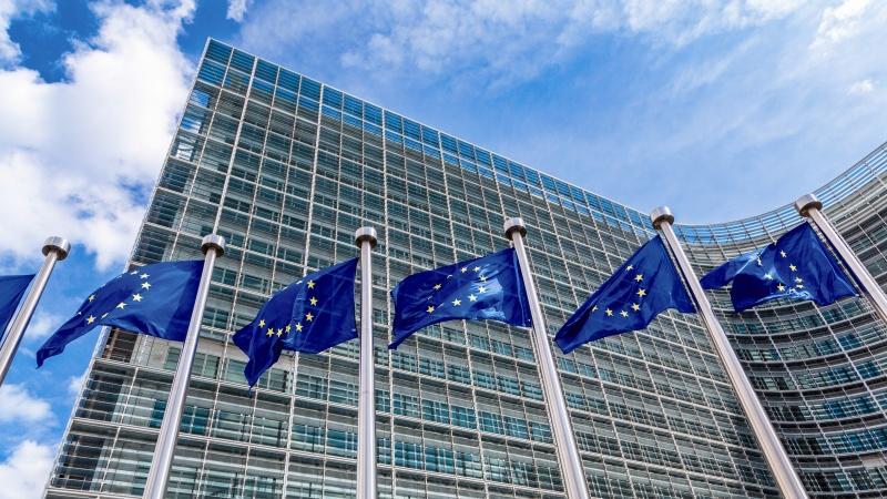 "Trans-Balkan ""combat"" for the new EU Energy Commissioner"